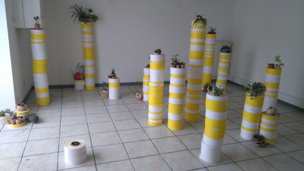 modèle de développement. Installation. Végétaux sur des colonnes.